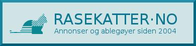 Surf til RASEKATTER·NO